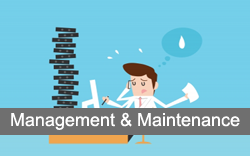 Website Maintenance and Social Media Management